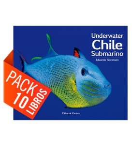 Pack 10 Chile Submarino