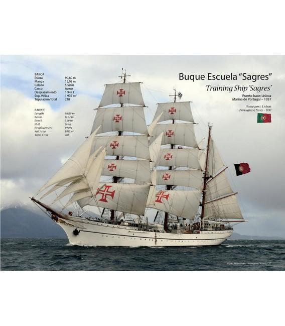 Regata Bicentenario 2010
