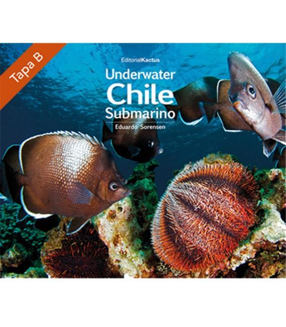 Chile Submarino